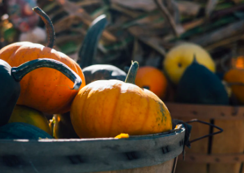 Festive Halloween Events near Antioch